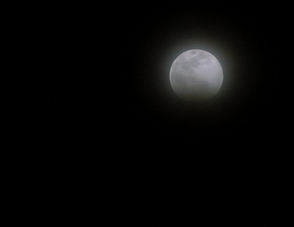 LunarEclipse-Jan2019-02867.jpg