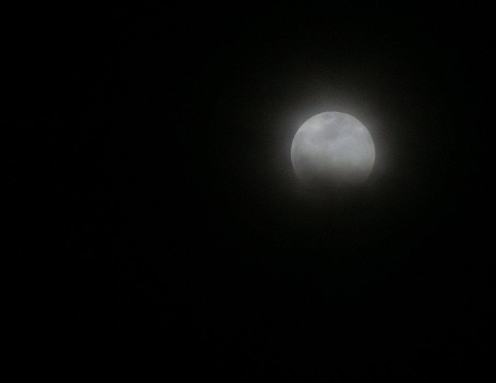 LunarEclipse-Jan2019-02869.jpg